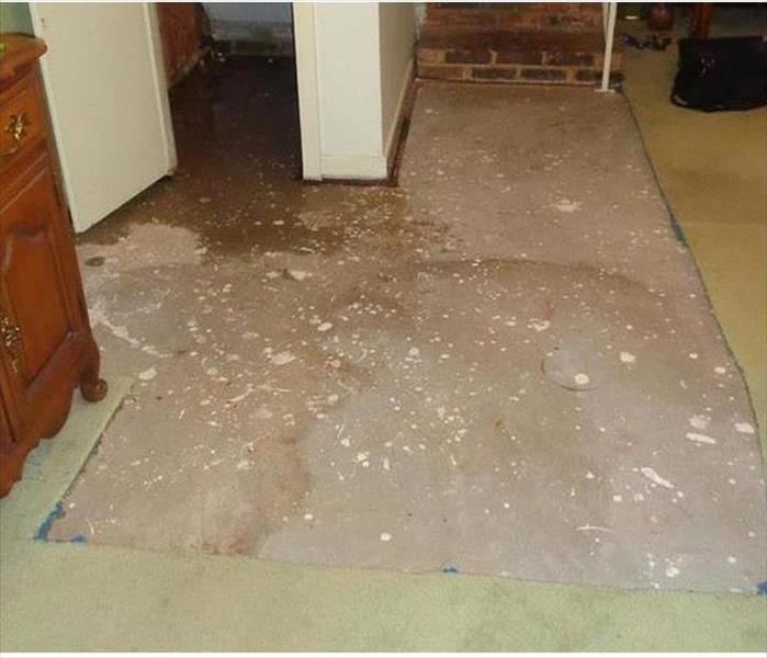 Water Damaged Carpet in Laconia