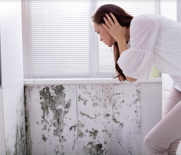 woman looking at mold on a wall