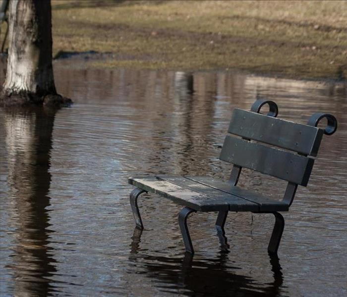 Storm Damage Franklin Flooding?? Don't Wait--Call SERVPRO for Water Extraction and Cleanup